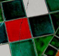 Трещины в плитке